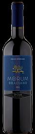 Carlos Rodriguez Morum Rioja Graciano 2018