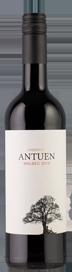 Sebastian San Martin Antuen Malbec 2020